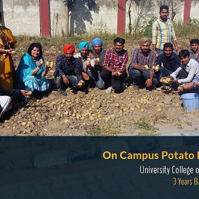 Best #Agricultural #Science Colleges in #Punjab The school of #Agriculture at the #University campus offers #Graduate and #Diploma courses in #Agriculture , #Horticulture, #Bee Keeping, #Diary Technology, #Fisheries, Forestry, #Veterinary Pharmacist, #Mushroom Cultivation and #Commercialization.