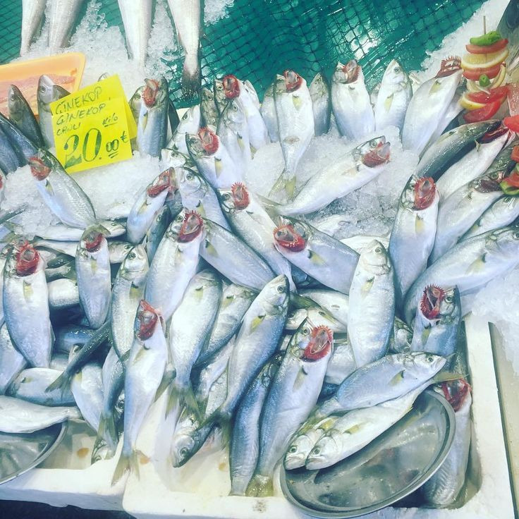 Świeżutkie ryby/targ rybny w Stambule #targrybny #ryby #targi #ryby #turkishcuisine #sardynki http://w3food.com/ipost/1512596074093829963/?code=BT90h2FA19L