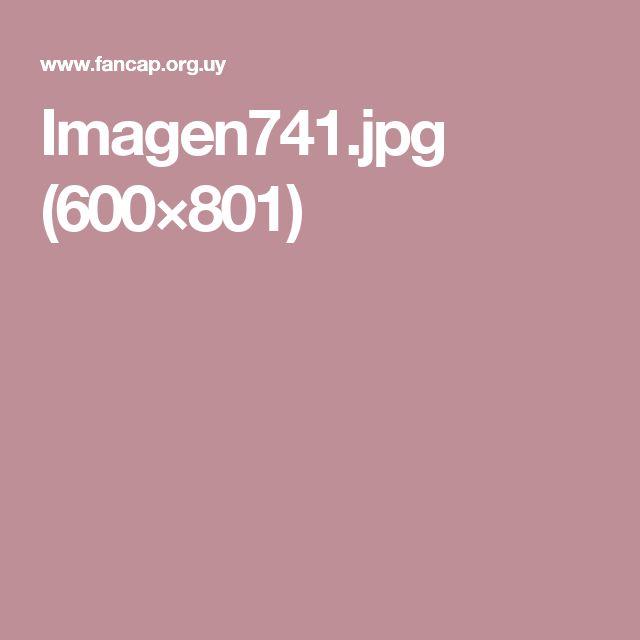 Imagen741.jpg (600×801)
