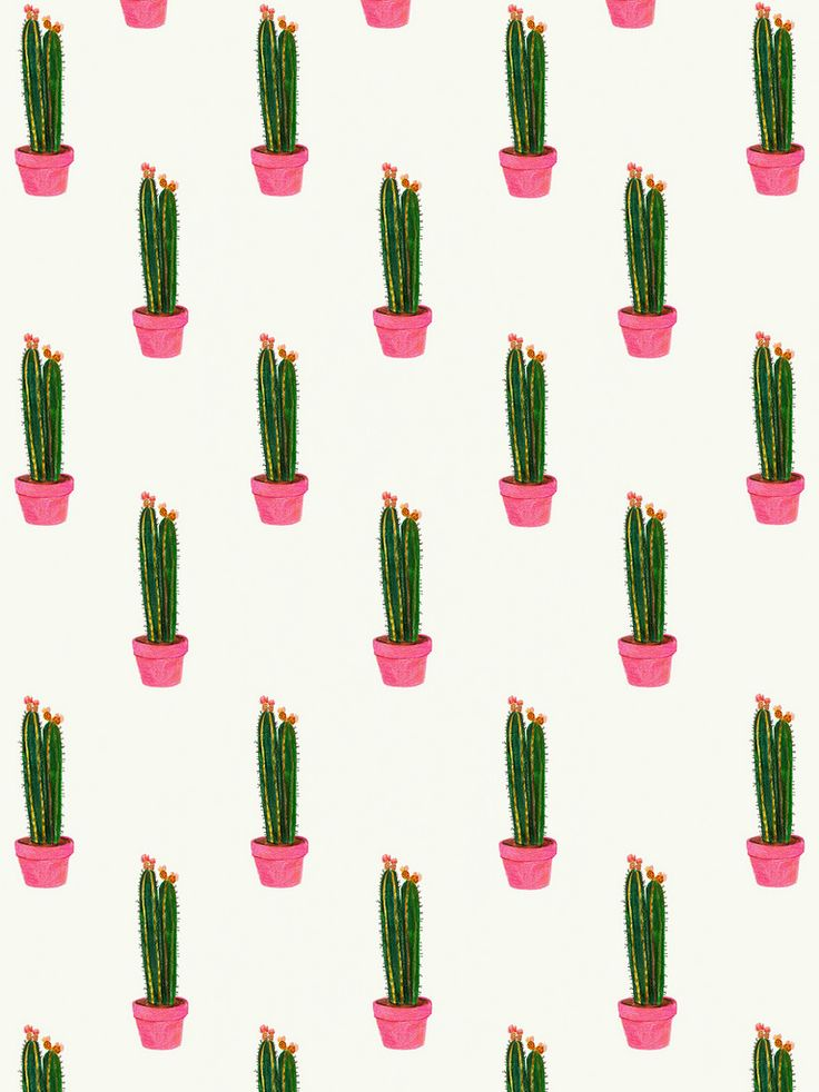Cacti - Daniela Dahf Henriquez. only one illustrations used to then be repeated to create a tessellated design. This could be used for a variety of things i.e. gift wrap, a canvas for interior decoration, notebook cover