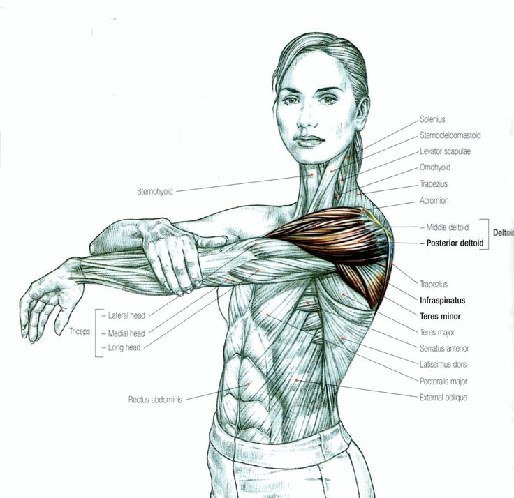 Estiramiento específico de hombros.