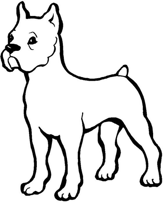 40 best Dog images on Pinterest | Coloring pages, Spanish ...