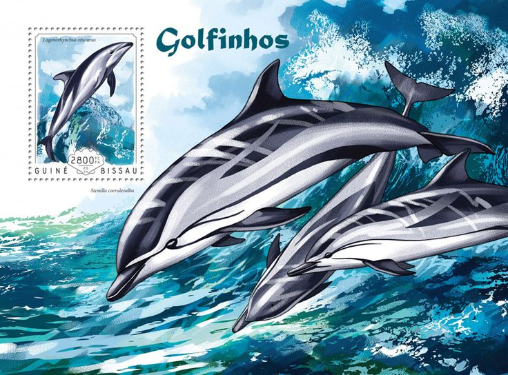 Post stamp Guinea-Bissau GB 14604 bDolphins (Lagenoryhynchus obscurus)