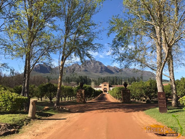 Waterford Wine Estate, Western Cape, Cape Winelands, South Africa