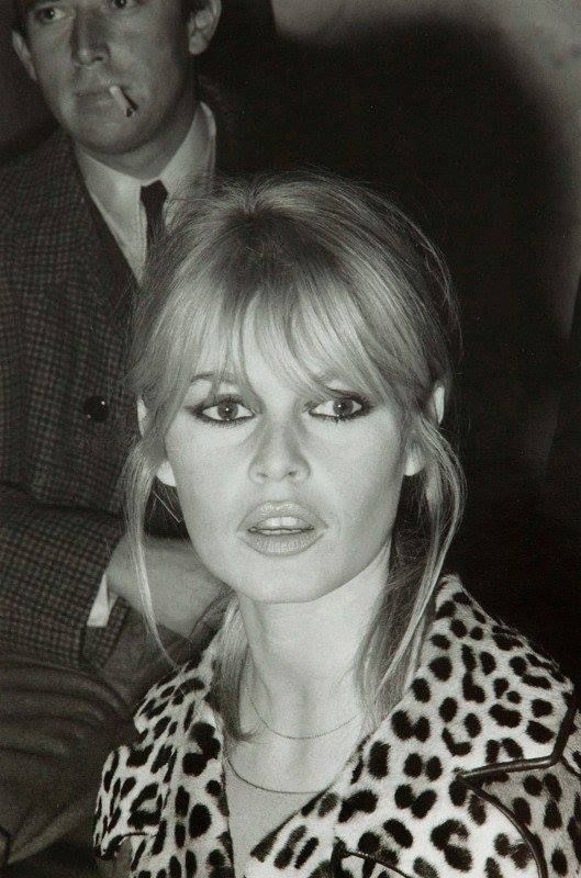 Brigitte Bardot  Gizia Loves Leopard Print  http://www.pinterest.com/gizia/we-love-leopard-print/