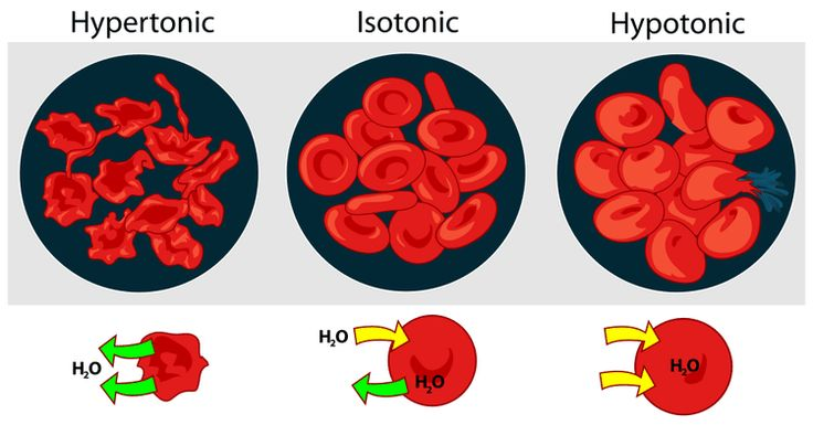 Understand Osmotic Pressure and Tonicity