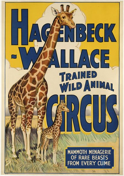 Best 25 animal posters ideas on pinterest outdoor for Circus posters free