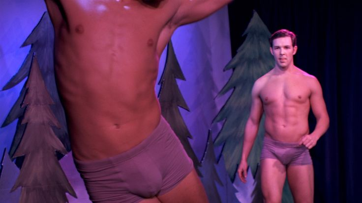 Essential Gay Themed Films To Watch, The Big Gay Musical
