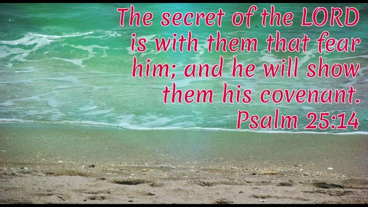Psalm 25 | The secret of the Lord | KJV.Trust in the Lord | Wait on God.But they that wait upon the LORD shall renew their strength; they shall mount up with wings as eagles; they shall run, and not be weary; and they shall walk, and not faint. Isaiah 40:31.