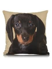 George Home Sausage Dog Cushion 43x43cm