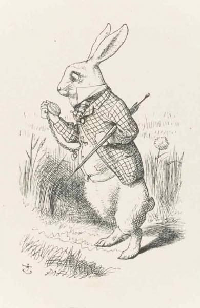 Bunnies in children's books: from Alice in Wonderland to Peter Rabbit   University of Cambridge