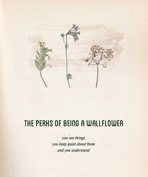 The perks of being a wallflower by earlgreymornings i would like to think about this - Wall flower design ...