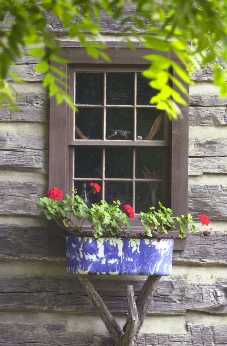 love this rustic window box on a tree trunk with branches.