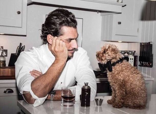"officialdavidgandy: ""This @TL_mag shoot has gone to the dogs! My sleeve is torn, and you're in a bow tie! David Gandy covers TL_mag 