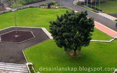 Memilih Pohon yang Tepat untuk Taman/Halaman Rumah - Desain Lanskap