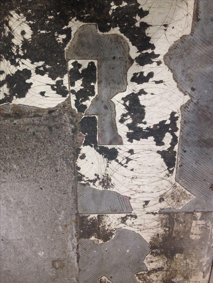 Antony Densham 2016. Ground Study, Dominion Rd, Auckland