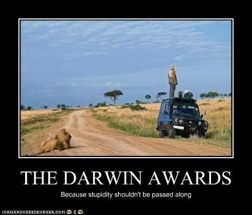 Best Darwin Awards Images On Pinterest Fails - 22 people surely win darwin award