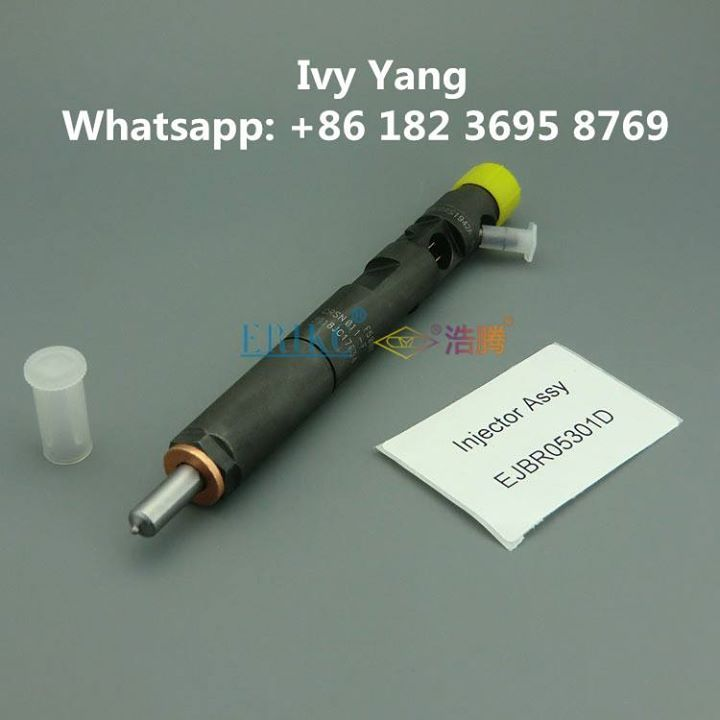 EJBR05301D Common Rail Delphi Injectors R5301D; In stock quick delivery. Welcome add whatsapp 86 18236958769 to inquiry now. Contact: Ivy Email: crdi@foxmail.com