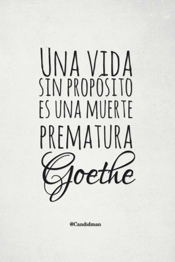 Una vida sin propósito es una muerte prematura. #Goethe http://www.gorditosenlucha.com/
