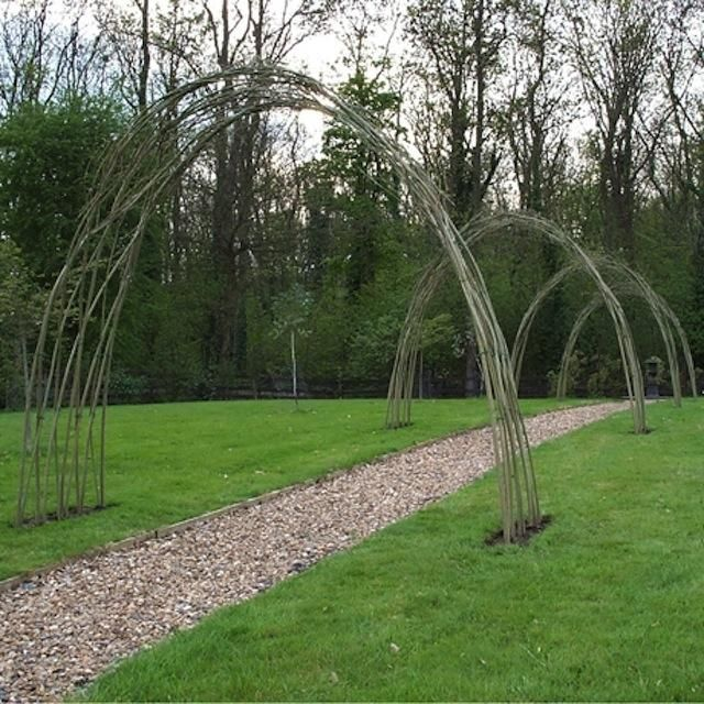 Best 25  Living willow fence ideas on Pinterest   Willow fence  Fences  alternative and Maclura pomiferaBest 25  Living willow fence ideas on Pinterest   Willow fence  . Living Willow Fence Panels. Home Design Ideas