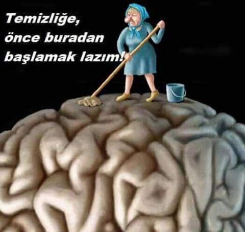 Beyin İle İlgili Sözler
