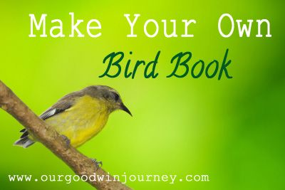 how to make your own bird book