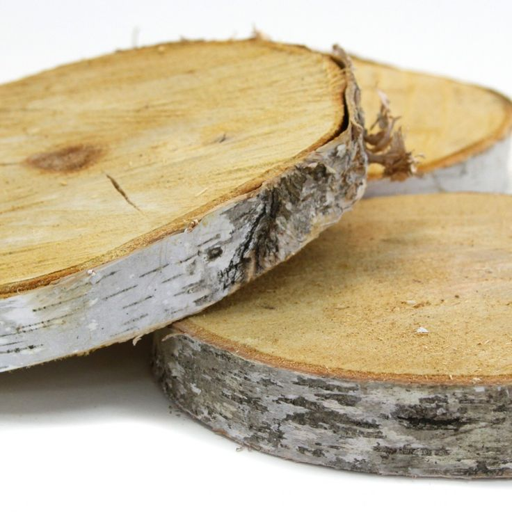 Birch tree wood slab centerpiece