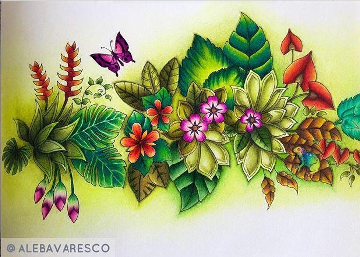 Magical Jungle By Johanna Basford
