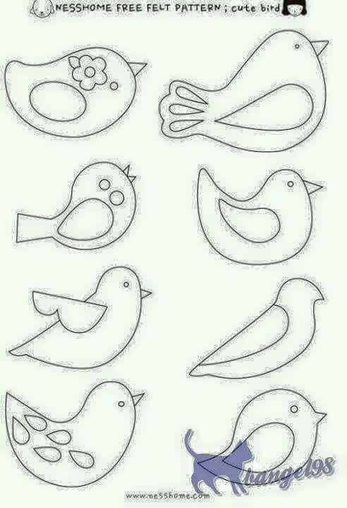 Vários modelos de pássaros