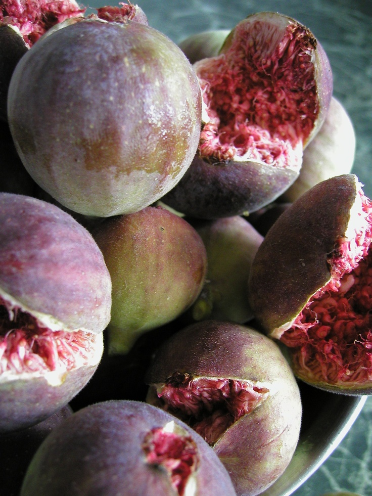Figs from Hillview Fig Tree, made the Best Jam!