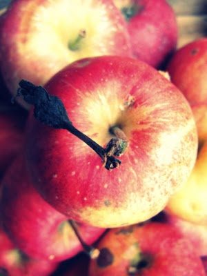 Polish apple- love it!