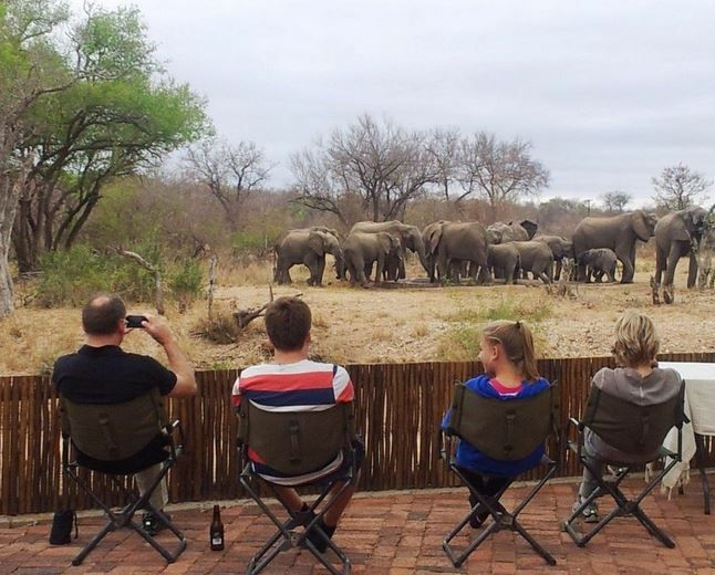 #elephants #waterhole #safari #nDzuti #Africa #Kruger #Klaserie #family #holiday #vacation #BigFive #elephantherd