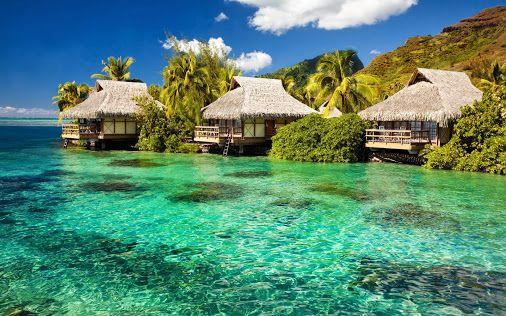 Amazing beach & resort