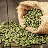 http://www.forum-brennstoffzelle.de/gruene-kaffeebohnen-und-gewichtsverlust/