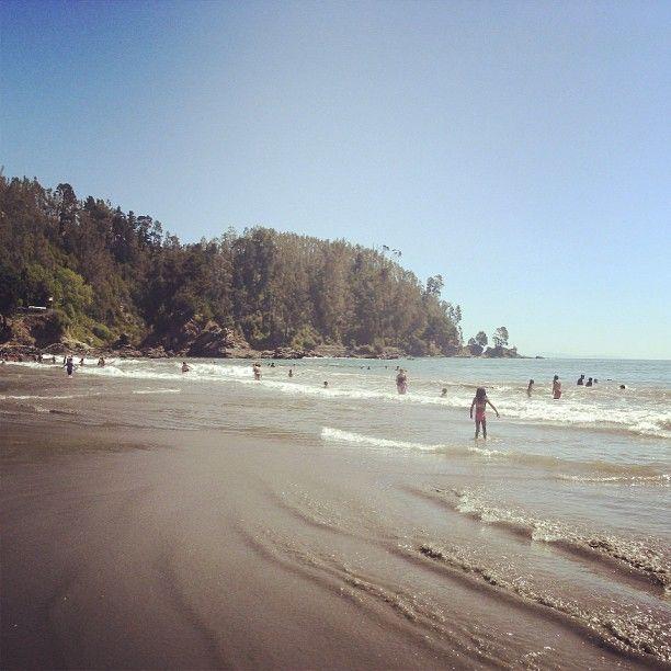 Colcura Beach. Lota. Chile.