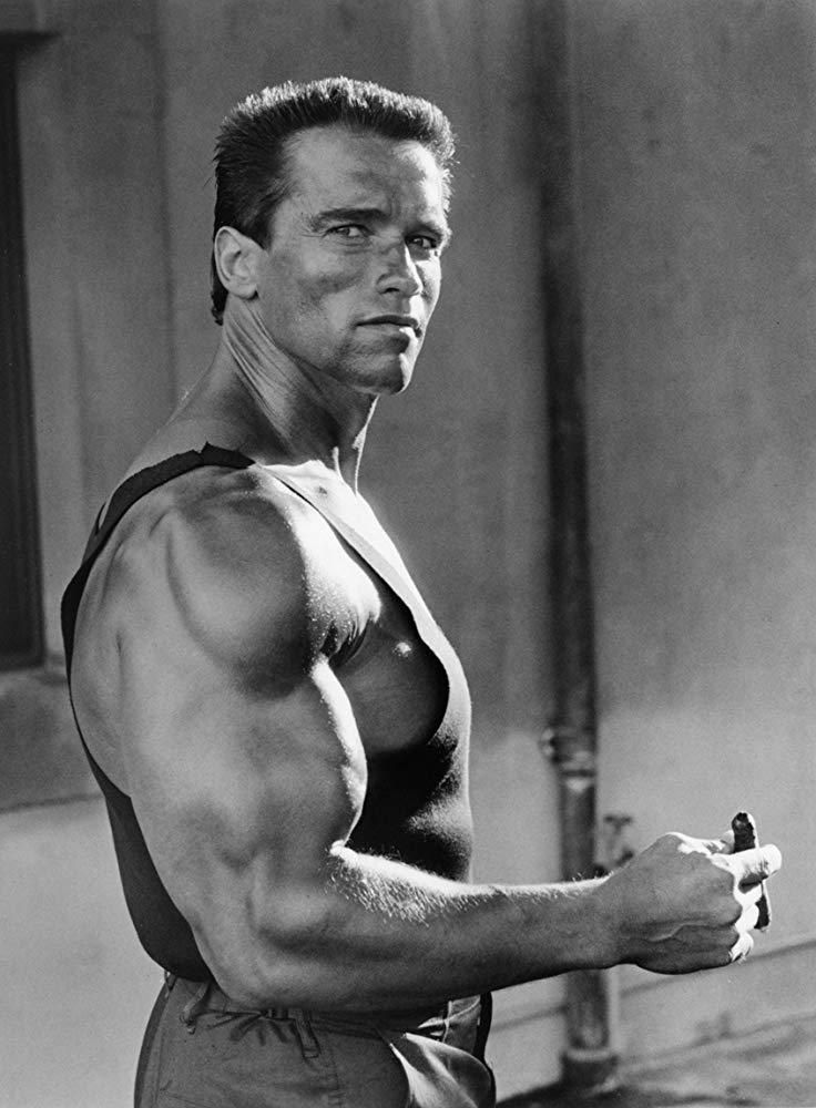 Check Out Inherent Clothier Shop For Premium Quality Suits In 2020 Arnold Schwarzenegger Bodybuilding Arnold Schwarzenegger Schwarzenegger Bodybuilding
