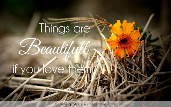 Things are beautiful if you love them.  #beautiful #beauty #flower #love #quotes #things