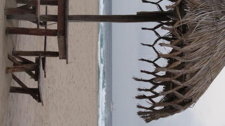 Angra Pequena - off Ponta Barra, Mozambique, 2012