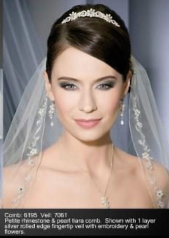 veil and headband/tiara