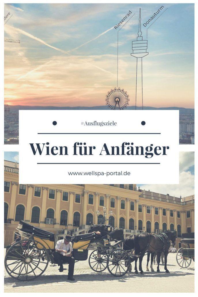Wien für Anfänger – Preissnbeere – Reiseblog – Travelblog