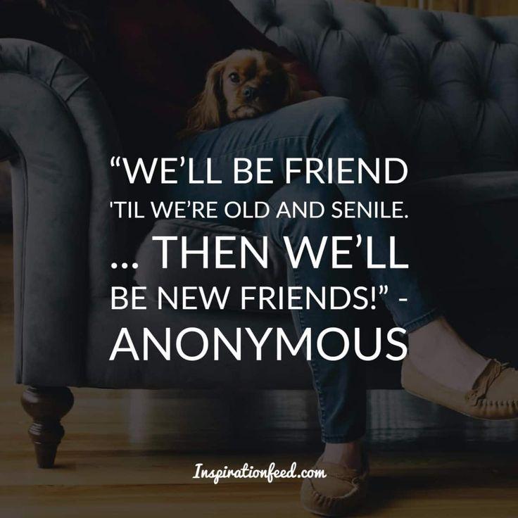Short True Friend Quotes: Best 25+ Cute Short Friendship Quotes Ideas On Pinterest