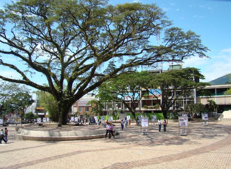 """Villavicencio-""""capital del paisaje colombiano"""", es considerada la capital de los Llanos. Departamento del Meta."""