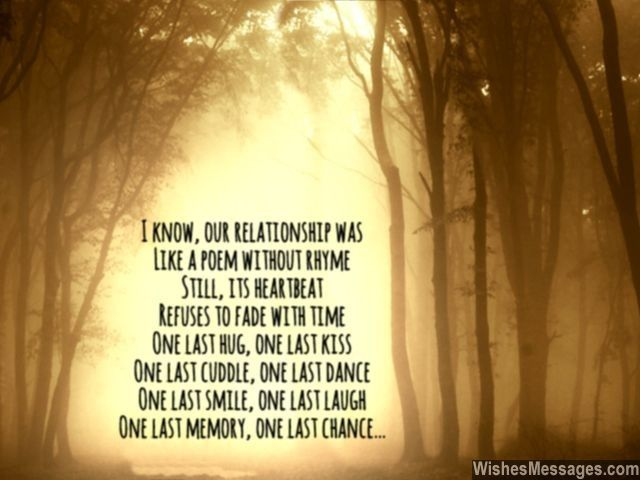 I know, our relationship was Like a poem without rhyme Still, its heartbeat Refuses to fade with time One last hug, one last kiss One last cuddle, one last dance One last smile, one last laugh One last memory, one last chance... via WishesMessages.com
