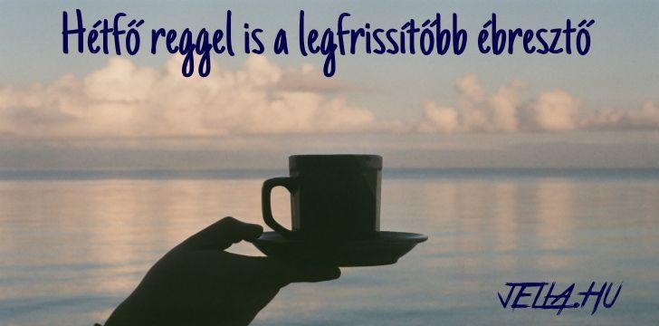 Hétfő reggel is a legfrissítőbb ébresztő a ganodermás kávé! jella.hu
