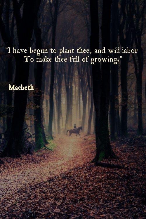 Macbeth quote.