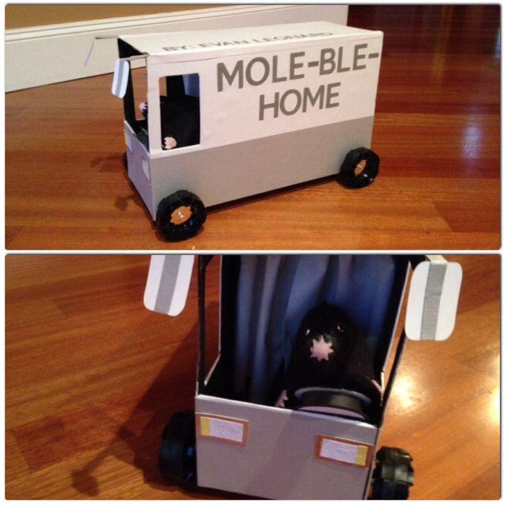 Mole Chemistry Project.  Mole-ble-Home!