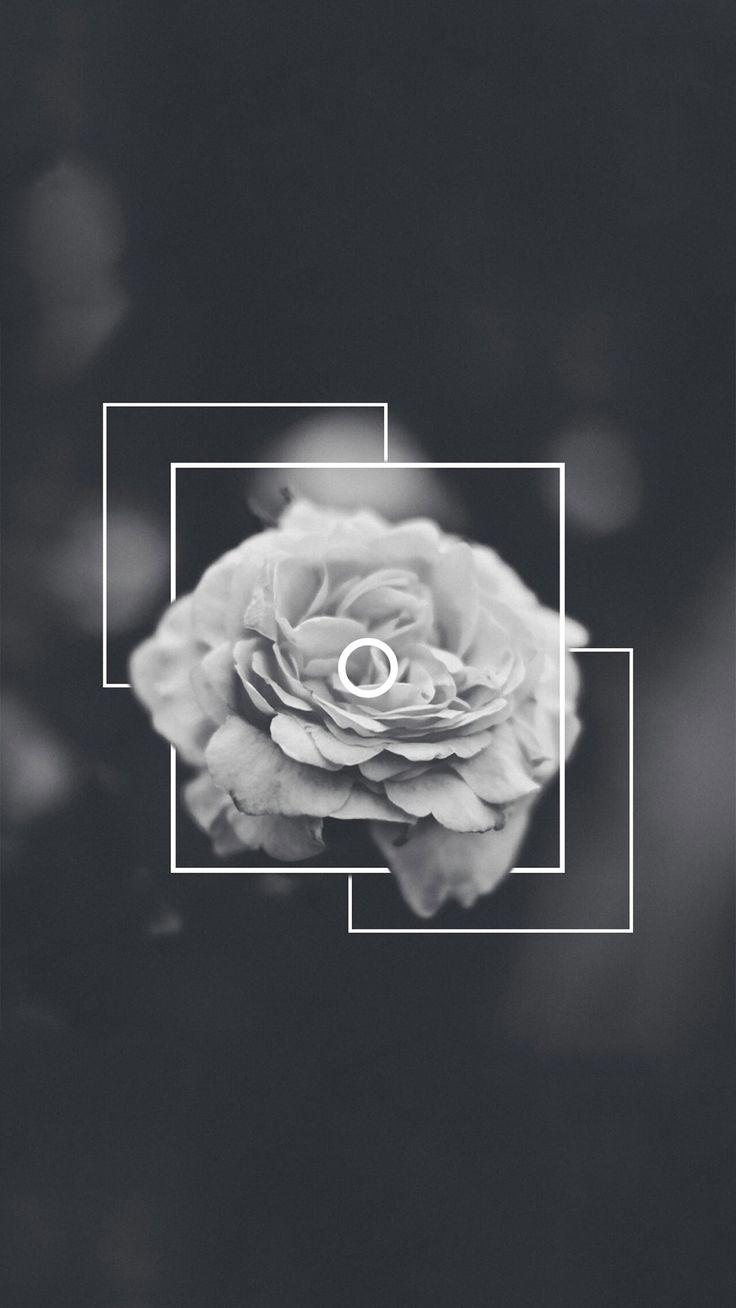 Pinterest | @MissTaylor