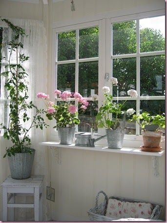A reminder to put a simple shelf under a window! It doesn't always have to be a big piece of furniture! Galvanized Buckets as Planters on a White Shelf.