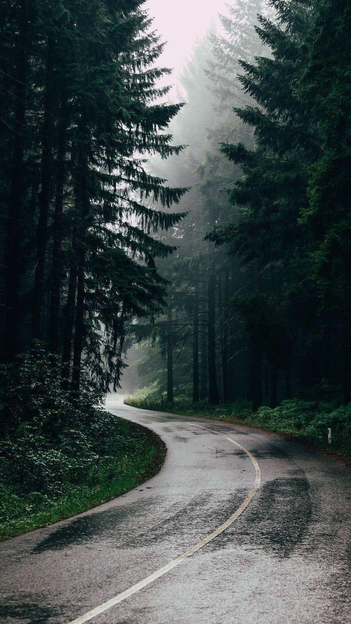 Bei der Gestaltung einzigartiger und exklusiver Innendetails lassen wir uns von der Umwelt in unserer Umgebung inspirieren – von Wäldern, Bergen, Wäldern und Stränden. Finde unsere Welt …