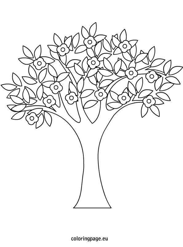 Spring Tree Coloring Page Spring Pinterest Trees Black And White Tree Coloring Page